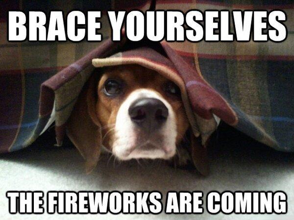 DogFireworks